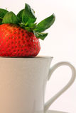 Fresh Red Strawberries inside a White China Teacup Royalty Free Stock Image