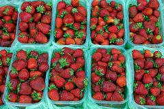 Fresh red strawberries in plastic boxes. Red strawberries in plastic cans royalty free stock images