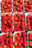Fresh red strawberries for sale Royalty Free Stock Photography