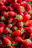Fresh red strawberries sale at marketplace Stock Photo