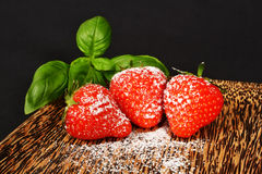Fresh red strawberries with sugar powder Stock Photography