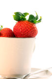 Fresh Red Strawberries in White Teacup Stock Photos
