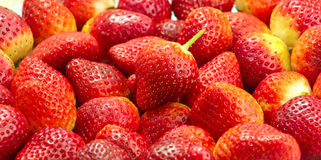 Fresh Red Strawberries Royalty Free Stock Image