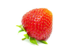 Fresh red strawberry stock image