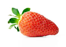 Fresh red strawberry Royalty Free Stock Image
