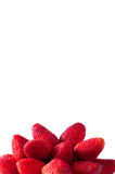 Fresh red strawberry Royalty Free Stock Images