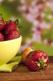 Fresh red strawberry Royalty Free Stock Photography