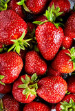 Fresh red strawberry background Royalty Free Stock Photography