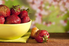 Fresh red strawberry Royalty Free Stock Photos