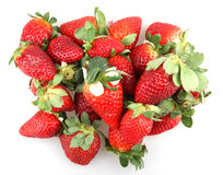 Fresh red strawberry Royalty Free Stock Photo
