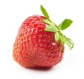 Fresh red strawberry Stock Photos