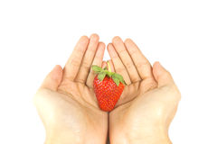 Fresh red strawberry with hand Royalty Free Stock Image