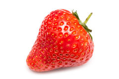 Fresh Red Strawberry Isolated Stock Photography