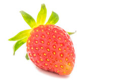 Fresh  red  strawberry  isolated on white background Stock Photography