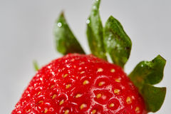 Fresh red strawberry with water drops Stock Photography
