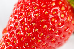 Fresh red strawberry with water drops Royalty Free Stock Images