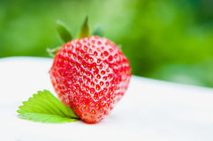 Fresh red strawberry Stock Images