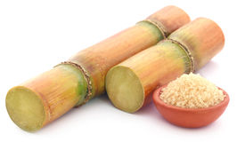 Fresh red sugarcane with sugar Royalty Free Stock Photography