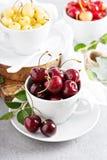 Fresh red sweet cherry Stock Photos