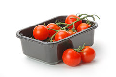 The fresh red tomato Royalty Free Stock Photography