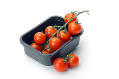 The fresh red tomato Royalty Free Stock Images