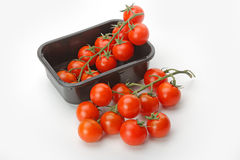 The fresh red tomato Stock Image