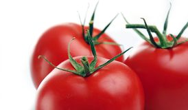 Fresh Red Tomato Royalty Free Stock Images