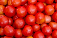 Fresh red tomato Stock Photo