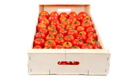 Fresh red tomato in the drops of water in a wooden box. Stock Photo