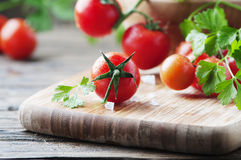 Fresh red tomato with green parsley Stock Photography