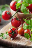 Fresh red tomato with green parsley Stock Photo