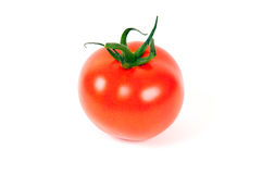 Fresh Red Tomato isolated Stock Photography