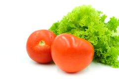 Fresh red tomato and lettuce  on white background Stock Photo