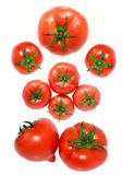 Fresh Red Tomato On White Back Stock Photos