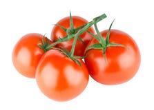 Fresh red tomato vegetable Stock Photo