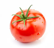Fresh red tomato Royalty Free Stock Photo