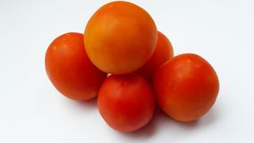 fresh red tomato  on white background royalty free stock photography