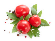 Fresh red tomatoes Royalty Free Stock Images