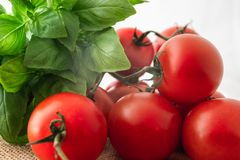 Fresh Red Tomatoes and Basil stock image