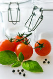 Fresh red tomatoes with basil leaf Royalty Free Stock Image