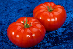 Fresh red tomatoes on blue background Stock Images