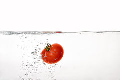 Fresh Red Tomatoes in Boiling Water Isolated on White Background Royalty Free Stock Photos