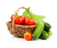 Fresh red tomatoes and cucumber Stock Images