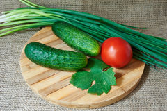 Fresh red tomatoes and cucumbers, green onions on a wooden tray Stock Images