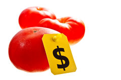 Fresh red tomatoes for dollars. Fresh red tomatoes isolated on white with a dollar sign tag on it royalty free stock photos