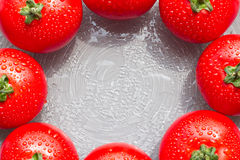 Fresh red tomatoes with drops on a plate. Fresh red tomatoes with drops in circle on a plate for sample texte on it Stock Photos
