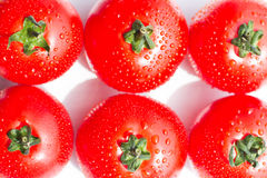 Fresh red tomatoes with drops on a white background Stock Image