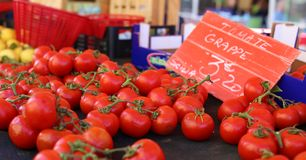 Fresh red tomatoes at a farmer market in France, Europe. Italian tomatoes. Street French market at Nice. Fresh food by local farmers Stock Photo