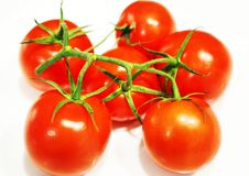 Fresh red tomatoes with green stalk Royalty Free Stock Images