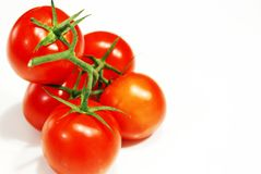 Fresh red tomatoes with green stalk Royalty Free Stock Photography